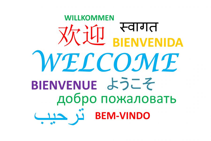 Lær sprog med eReolen Global